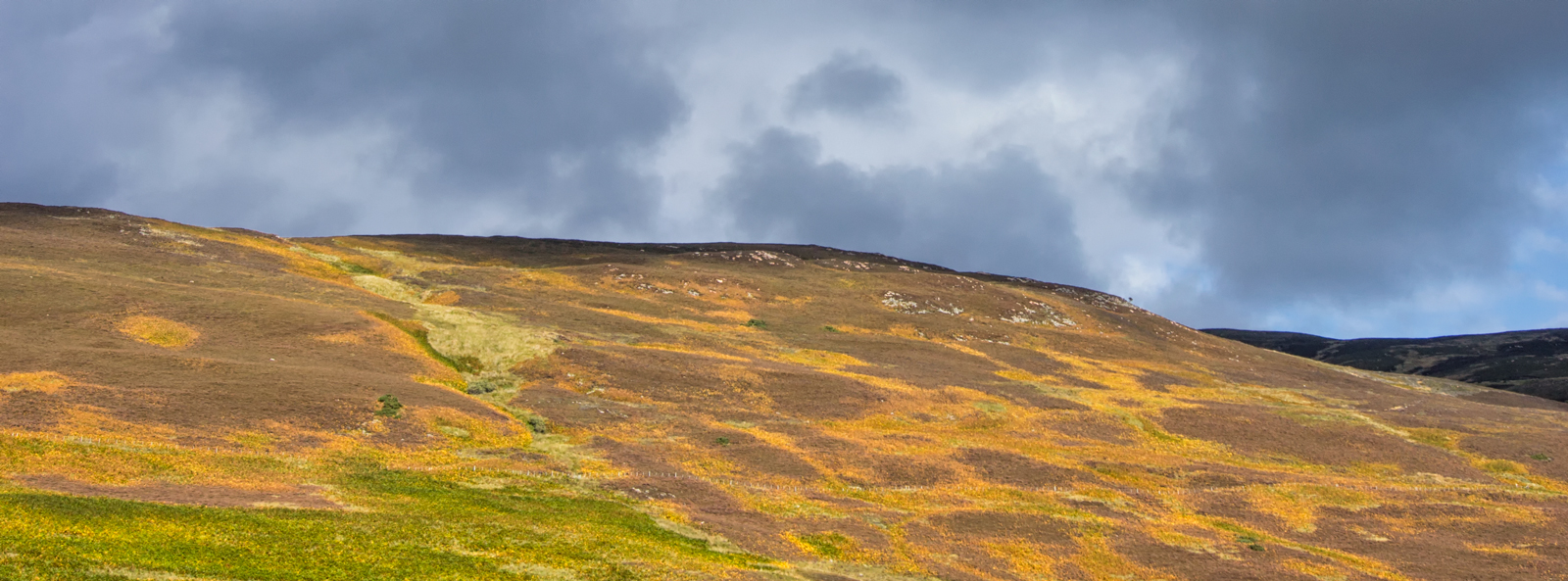 1058-Schotland34_WMP