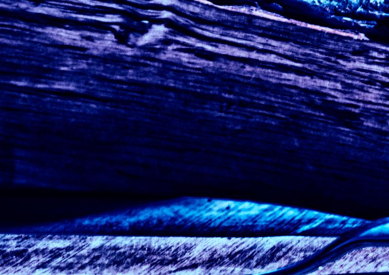 Blauw6_DSC4027.jpg